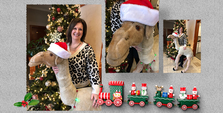 Michelle Marinacci and The Legacy of Carmen the Christmas Camel